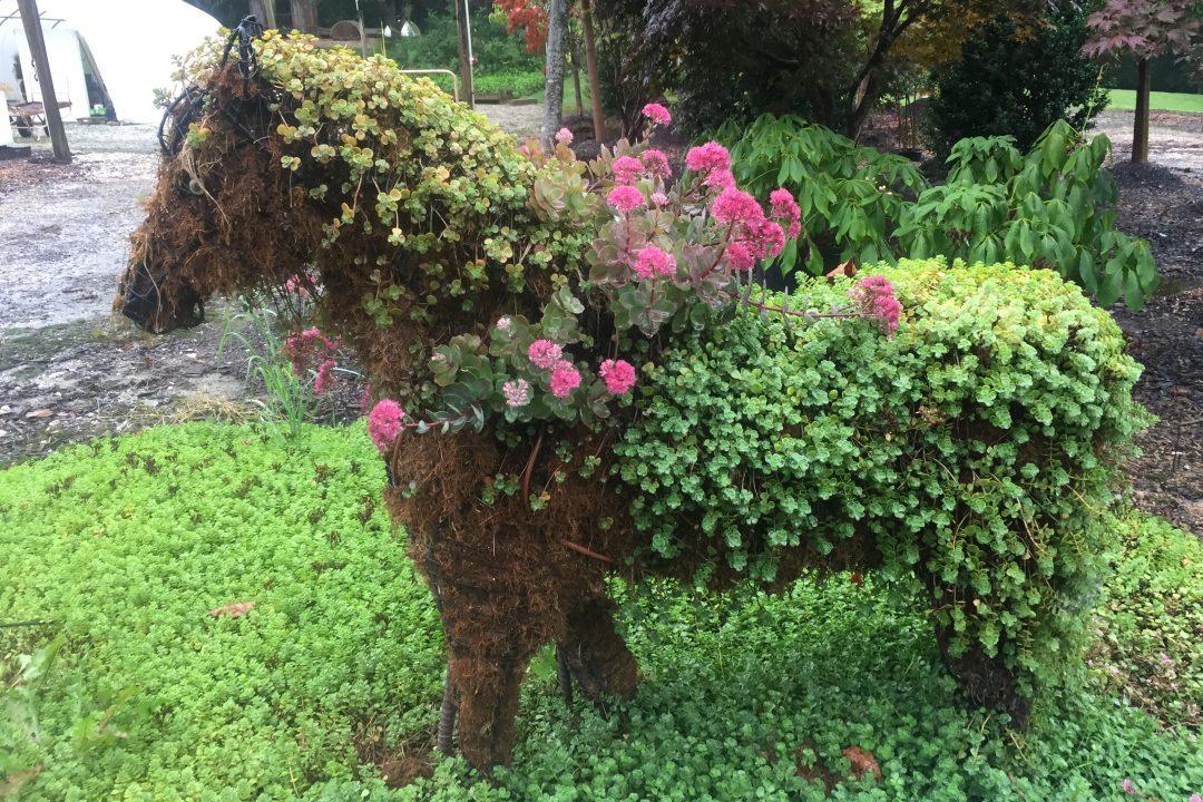 custom horse topiary flower