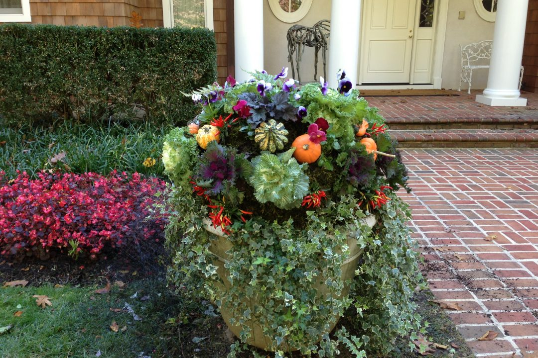 fall autumn container flower pot