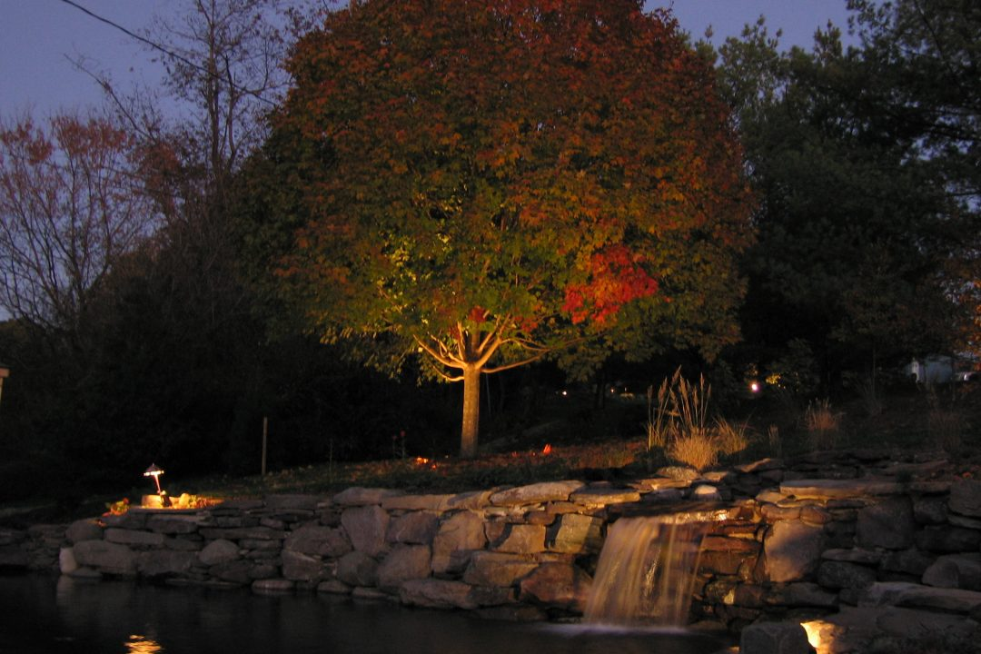 lighting sugar maple pond