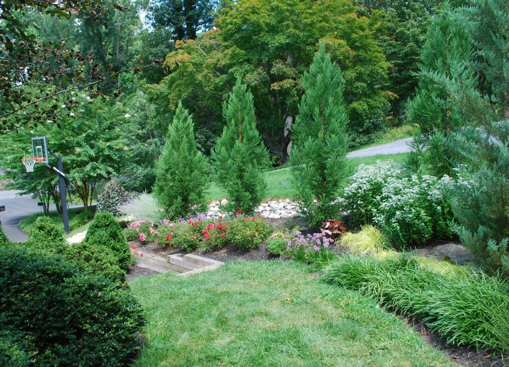 custom landscape design adjacent to retaining wall and driveway
