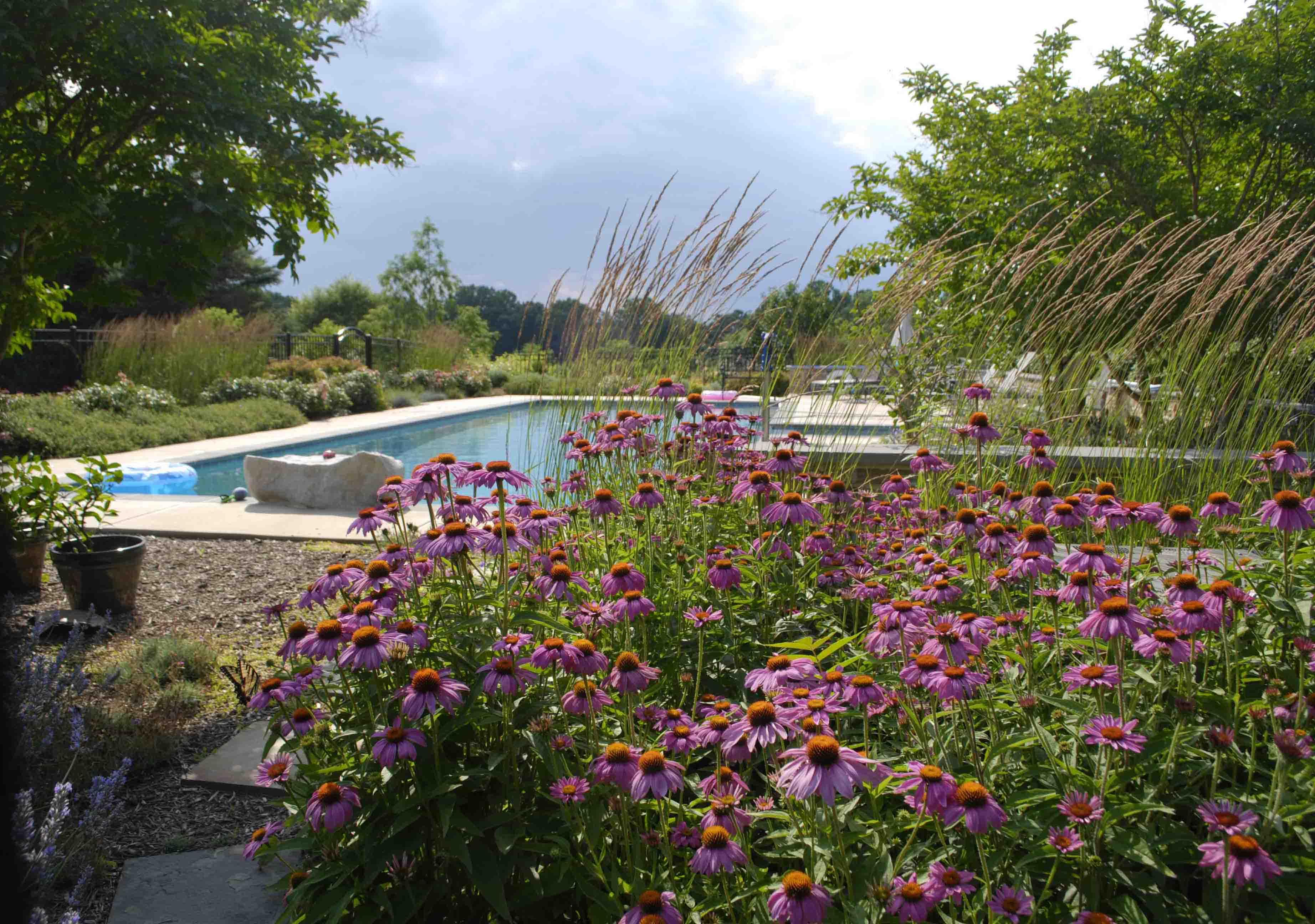 Mullan Nursery Company | Landscape Designers | Baltimore, MD