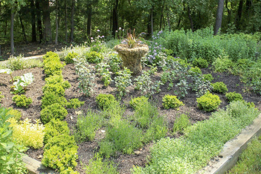 kitchen garden | flower bed | perennial garden | raised bed