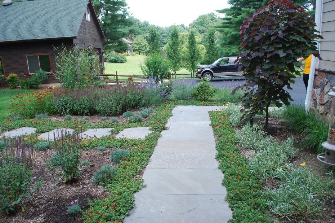 sidewalk between flower beds in landscape