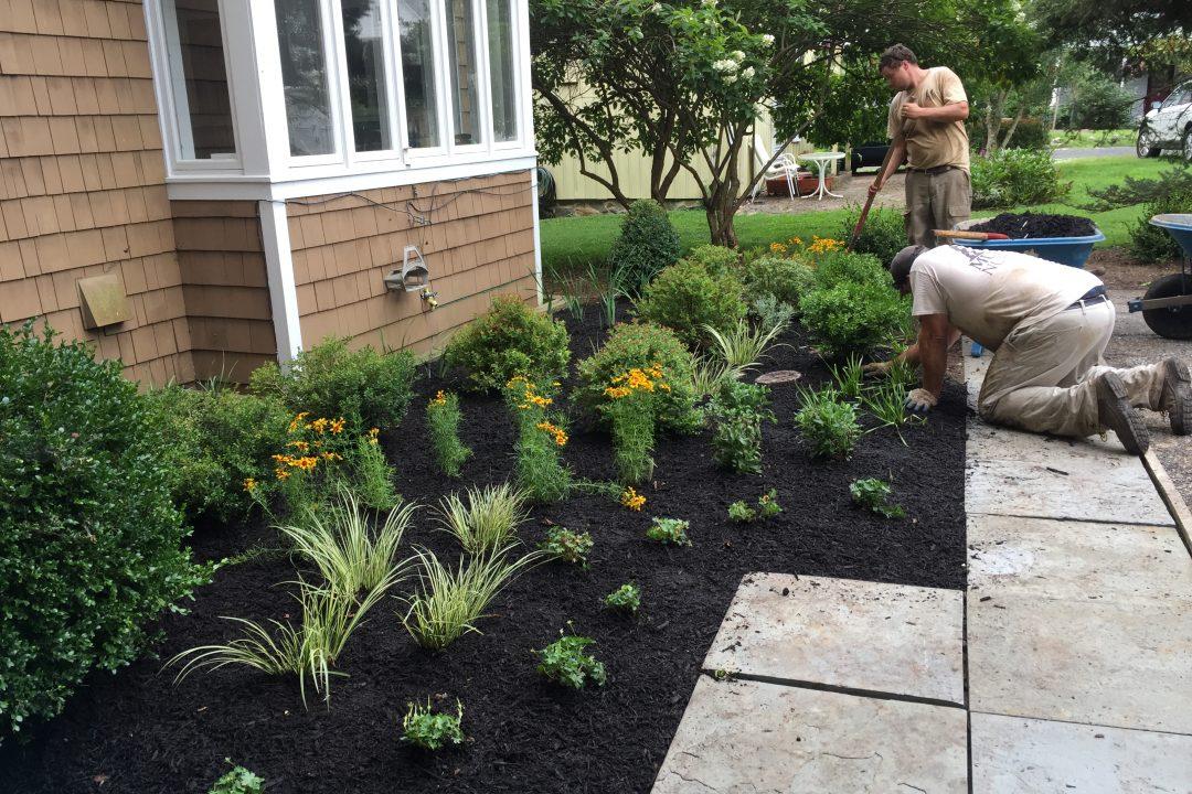 landscaper mulching flower beds