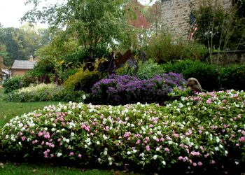 Mullan Nursery Co, Inc | Landscaping & Planting | Growers of Quality Nursery Stock | Baltimore, MD | Baltimore County, MD